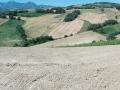 terre-rinforzate-sanlorenzoincampo8